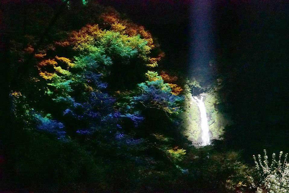 Tourist Event Illumination